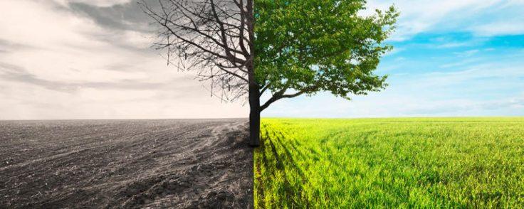 cropped-transformation.jpg